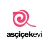 ascicekevi.com
